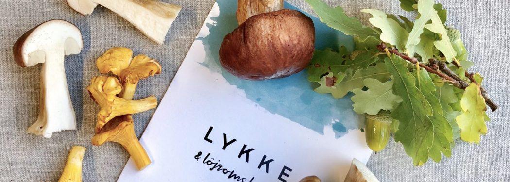 Lykke & Löjromsbarens meny på Nordic Light Hotel